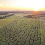 Yoders Farm Corn Maze 2014