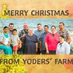 Merry Christmas from Yoders' Farm