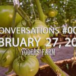 Growing a Hydroponic Greenhouse Tomato - Conversations #007