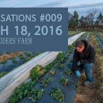 Spring Cleaning for Strawberry Plants - Conversations #009